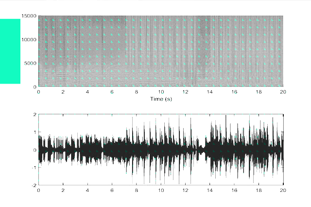 "Can you ""see"" the music? Look at the waveforms and tell us which music genre it is!"
