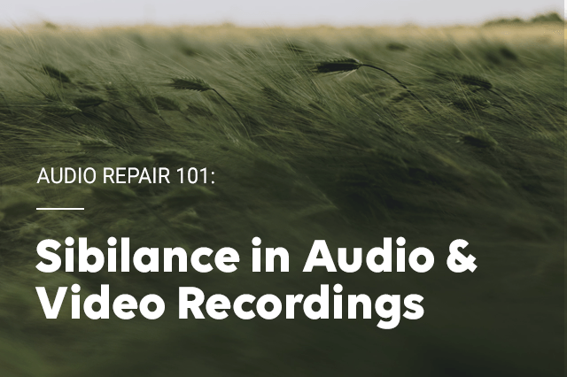 Audio Repair 101: Sibilance in Audio & Video Recordings
